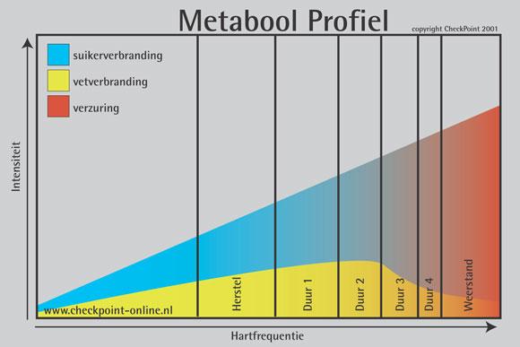 hardlopen conditie opbouwen schema